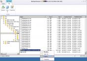 Find the Exchange Database
